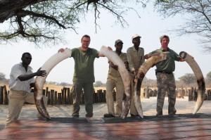 2 éléphants chasse Namibie