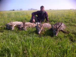 4  brocards chasse Serbie