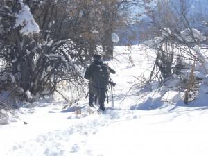 Approche sanglier Tadjikistan
