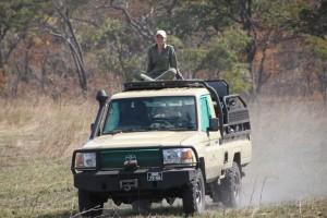 Ballade safari chasse Mozambique