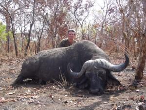 Buffle FM safari chasse tanzanie
