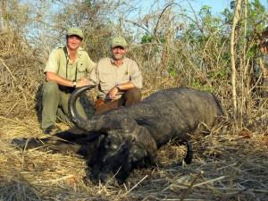 Buffle ML Blaser safari chasse tanzanie