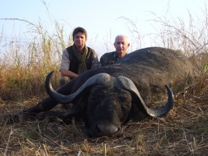 Buffle caffer JPB safari chasse tanzanie