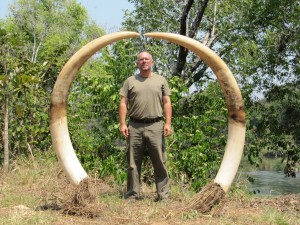 Eléphant Pemba safari chasse Mozambique