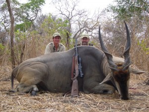 Eland Michael L Blaser safari chasse tanzanie