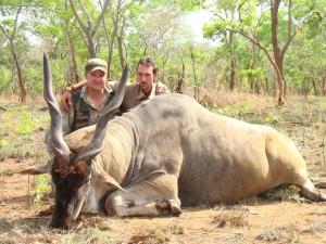 Eland de Livingstone safari chasse tanzanie