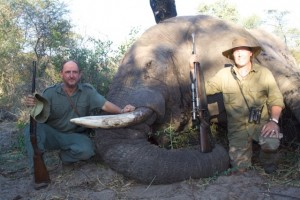 Elephant Mars 2013 safari chasse Namibie