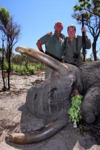 Elephant Octobre 2012 safari chasse Namibie