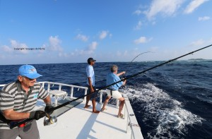 GT FISHING DHONI POPPING