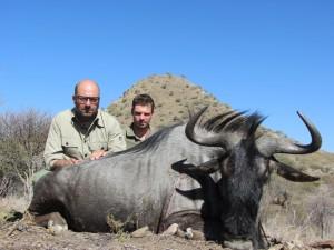 Gnou bleu Ed safari chasse namibie