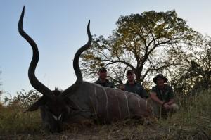 Grand koudou Bubye safari chasse Zimbabwe