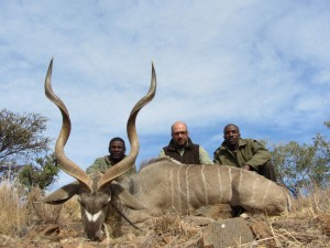 Grand koudou Ed safari chasse namibie