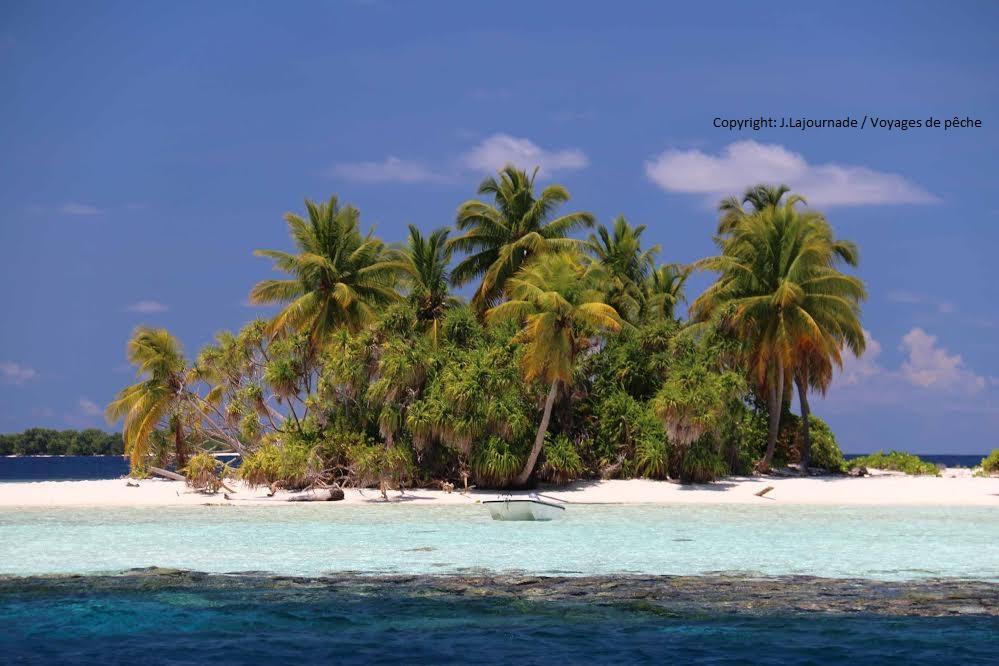 ILE MALDIVES FISHING