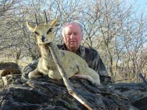 Klipspringer safari chasse namibie