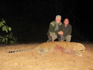 Léopard 2013 safari chasse Mozambique