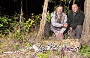Léopard 2015 safari chasse Mozambique