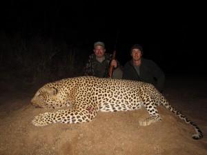 Leopard Bubye safari chasse zimbabwe