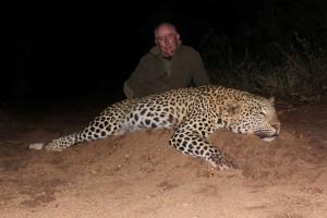 Leopard JP safari chasse zimbabwe