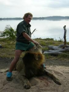 Lion Mitole safari chasse tanzanie