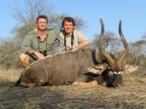 Nyala Pierre safari chasse zimbabwe