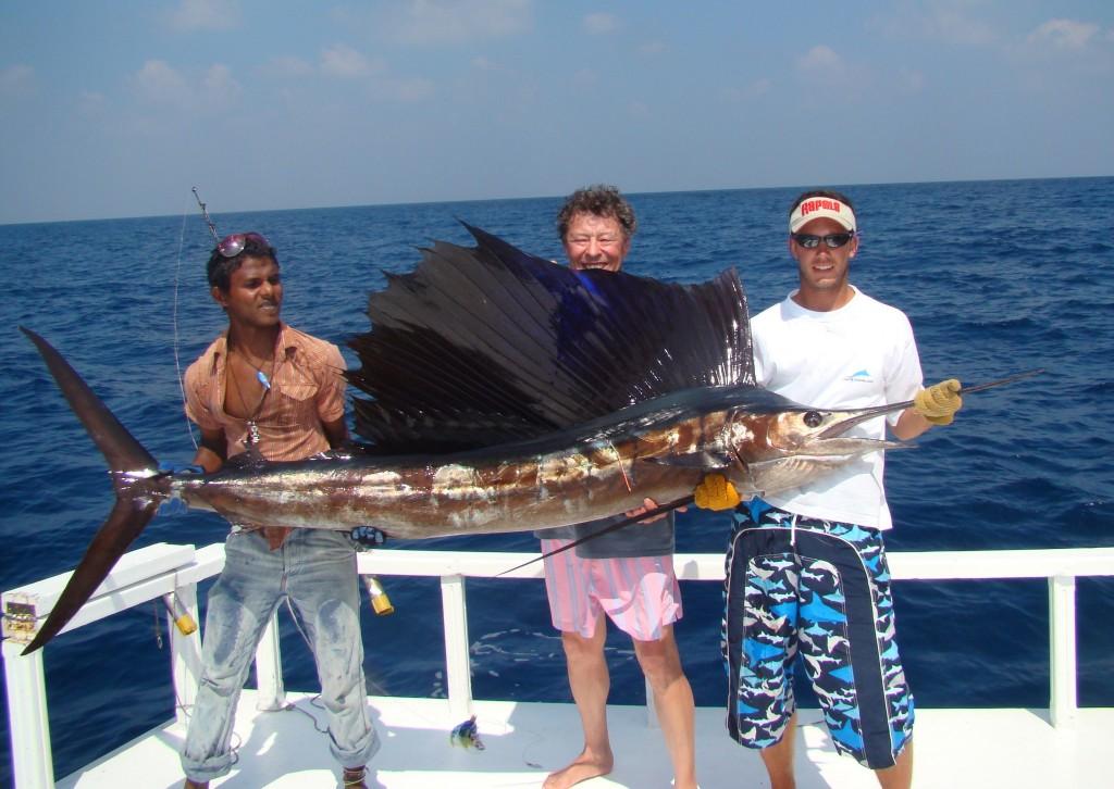 SAIL FISH ESPADON VOILIER MALDIVES