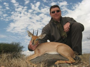 Steenbok GM safari chasse namibie