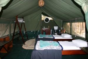 Tente Selous safari chasse Tanzanie