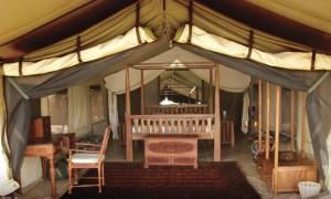 Tente client safari chasse tanzanie