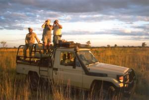Toyota dans la plaine safari chasse tanzanie