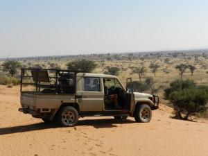Toyota kalahari safari chasse namibie