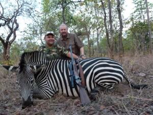 Zèbre de burchell Jerome safari chasse Mozambique