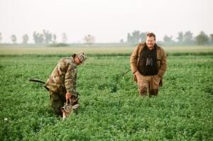 brocard dans les blés chasse en serbie
