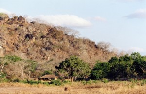campement safari chasse tanzanie