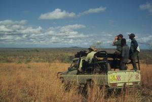 grande plaine Selous safari chasse tanzanie
