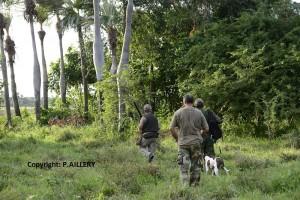 Ambiance chasse Cuba
