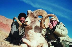 Argali J Vettier Kirghizstan