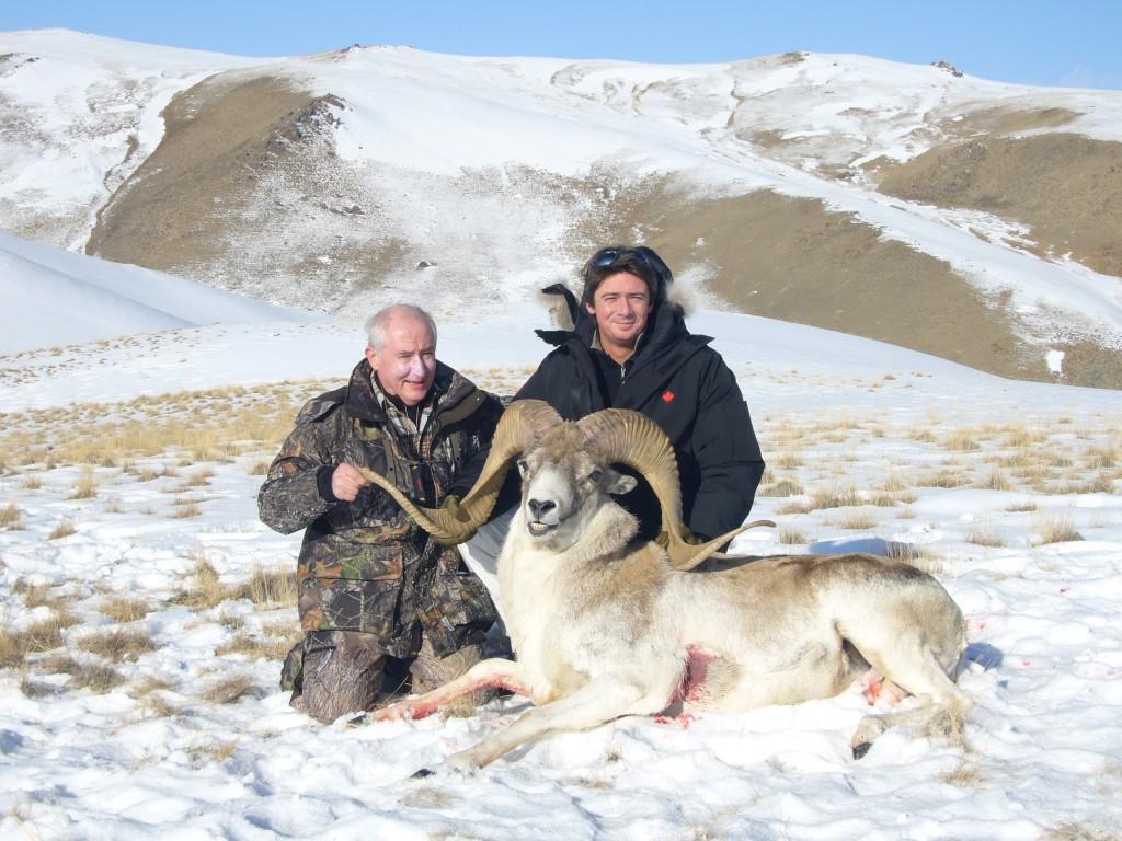 Argali Jean-Pierre Kirghizstan