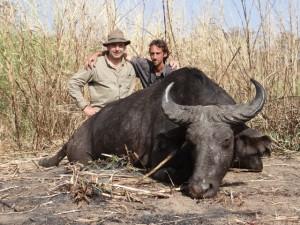 Buffle Franck Faro safari chasse Cameroun