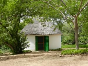 Chambre Faro coron safari chasse Cameroun