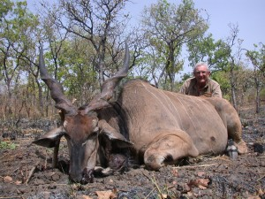 Eland de Derby 2009 safari chasse Cameroun