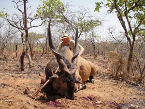 Eland de Derby Vina safari chasse Cameroun