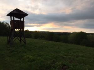 Mirador chasse en Croatie