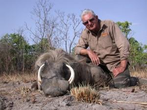 Phacochère Vina safari chasse Cameroun