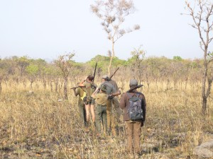 Pistage Vina safari chasse Cameroun