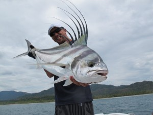 poisson coq samara costa rica