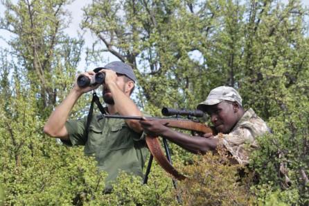 tir chasse sejour afrique du sud
