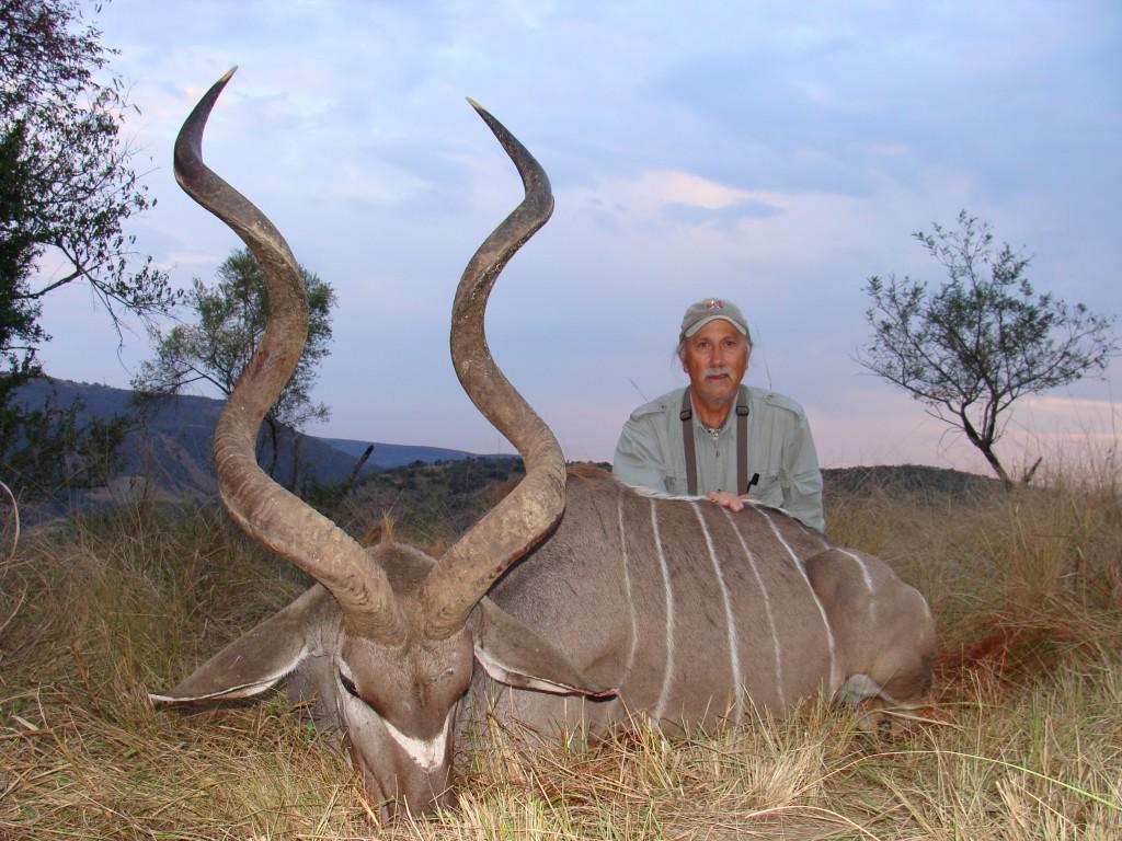Grand koudou sejour chasse afrique du sud
