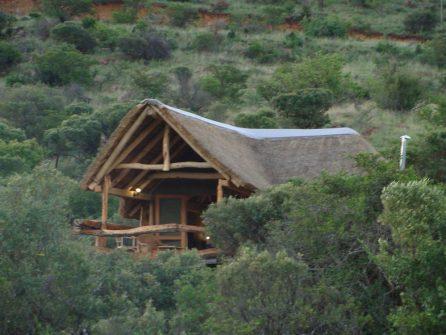 camp baviaansriver sejour chasse afrique du sud