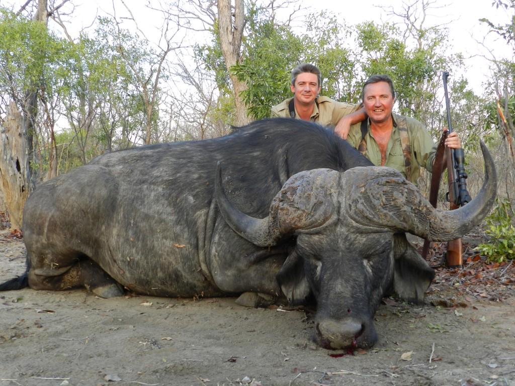 Buffle 105 cm Thierry safari chasse zimbabwe