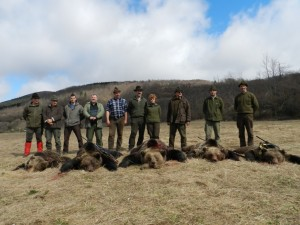 5 Ours chasse Croatie
